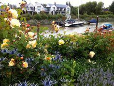 Rose Ganden Ideas. Country Rose Garden. Cottage Rose Garden #RoseGarden #Rose #Roses #Garden Glenna Partridge Garden Design.