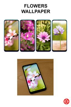 Phone wallpaper Flowers Wallpaper Nature mobile phone wallpaper download