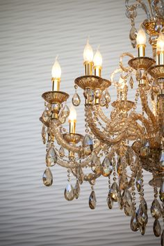 Maxxima LED candle bulbs are popular for chandeliers, sconces and candelabra fixtures. Led Candelabra Bulbs, Led Candles, Decorative Lights, Light Decorations, Sconces, Chandelier, Lily, Ceiling Lights, Interior Design