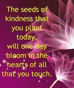 plant seeds......