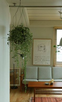 Tips on How to Start an Interior Garden – Style Gardening Interior Garden, Interior And Exterior, Cafe Plants, Earthy Home Decor, Interior Styling, Interior Design, Japanese Interior, Green Rooms, Home Living Room