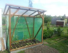 das fertige Tomatenhaus