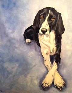 Oil painting   #dog #dogart   http://www.petrashop.com/