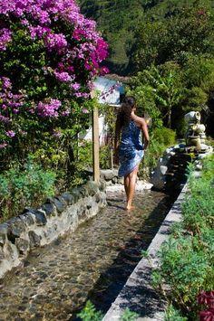 Podoterapia Backyard Stream, Garden Stream, Backyard Water Feature, Ponds Backyard, Water Garden, Garden Pond, Natural Pond, Pond Landscaping, Water Features In The Garden