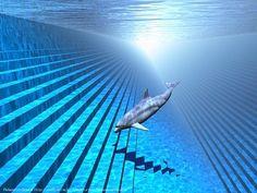 seapunk dolphin - Google Search