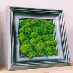 52x52cm Herbs, Art, Art Background, Kunst, Herb, Performing Arts, Art Education Resources, Medicinal Plants, Artworks