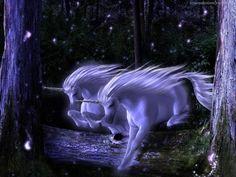Animali mitici - sfondo del desktop: http://wallpapic.it/cartoni-e-fantasy/animali-mitici/wallpaper-4047