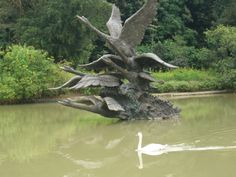 as i stood awestruck at this magnificent sculpture of swans taking flight at the singapore botanic