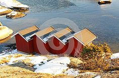 Red wooden rorbu quadruple over the North Sea water. Norwegian vegetation on the coast. Around the spruces, pines, heathers in the winter coat. Spruce Pine, Winter Images, North Sea, Winter Landscape, Winter Coat, Coast, Stock Photos, Building, Water