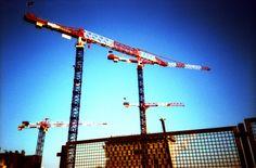 Cranes // Lomography