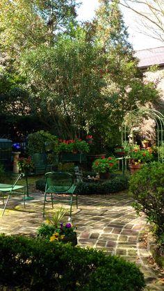 Sneak peek into a Charleston garden! It is Spring!