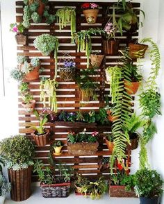um up na decoração: faça um jardim vertical Garden wall, how cool would this be for outside an entry way, or even on a fence?Garden wall, how cool would this be for outside an entry way, or even on a fence? Balkon Design, Walled Garden, Apartment Balconies, Apartment Plants, Cozy Apartment, Apartment Ideas, Apartment Balcony Garden, Apartment Gardening, Urban Apartment