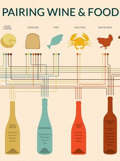 Ever Wonder What Wine Goes Best With What Food? This Chart Tells You  FROM Wine Folly IN The Kitchn