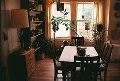 natural wood, natural lighting, plants