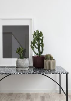 terrazzo table + collection of cacti (succulents + euphorbia too)--T.D.C: A Gorgeous New Housing Project by BLOOC
