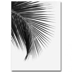 Tropical Palm Leaves Simple Minimalist Black & White Wall Art Posters Fine Art Canvas Prints For Living Room Modern Scandinavian Interior Design Leaf Wall Art, Canvas Wall Art, Wall Art Prints, Canvas Prints, Tree Canvas, Black And White Leaves, Black And White Wall Art, Black White, Wall Painting Decor