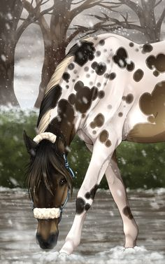 Agron having fun in the deep snow Oh wow look at this stallion. I love him You can win under this drawing his first breeding slot Enochiaris only have 3 slots and I want to give his first bree. Cute Horses, Pretty Horses, Beautiful Horses, Horse Drawings, Cute Animal Drawings, Art Drawings, Drawing Art, Star Stable Horses, Horse Animation