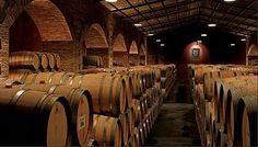 Flichman Vineyards