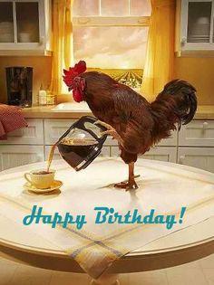 Happy Birthday! Rooster Birthday Greetings