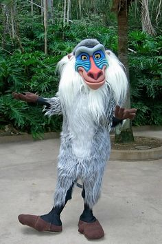 Rafiki at Disney's Animal Kingdom