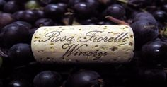 Rosa Fiorelli Winery & Vineyard (20 mins): 4250 County Road 675 Bradenton, FL. 34211. U-Pick Grapes July 15-Aug 21, 2016. Wed-Fri 9a-11a. Hybrid $2/lb; Muscadine $3/lb. ** Wine & Dine $65 (3hr open bar) Events in the Vines.Oct-May. ** Wine Down & Paint $50 (2hr, includes wine, cheese & crackers). Events Sep-May. Open Wed-Sun. Closed Mon & Tue. 1 Hour tour $10 on Sat/Sun 24 hr advance online registration. $25 Italian Sub Lunch tour (5 day advance registration); Italian Buffet Dinner tour $45