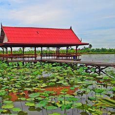 Still Life #Thai #Thailand #TakeMeTour #river #lake #green #red #pavilion #pool #localtrip #localatheart #localknowbest