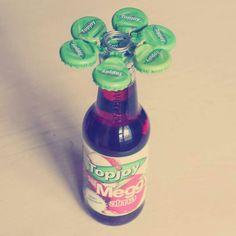 Topjoy virág.
