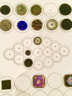 Button work tray with lacy glass buttons, Kaye Reed photo.