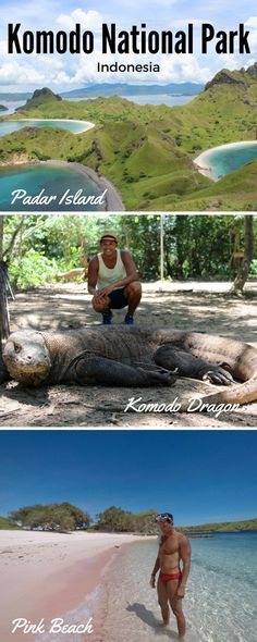 Stunning islands, komodo dragons, paradisiacal beaches... This is Komodo National Park, Indonesia.