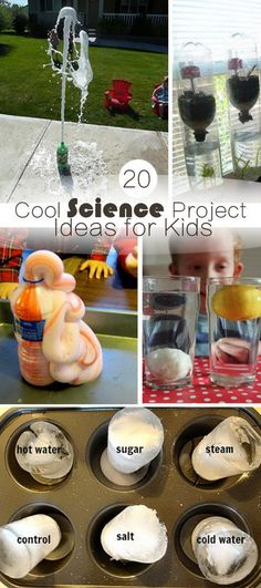 20 Cool Science Project Ideas for Kids Easy Science Experiments, Stem Science, Preschool Science, Kids Learning Activities, Science Classroom, Science Lessons, Teaching Science, Science For Kids, Science Activities