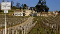 Château Fonplégade avec ses vignes en hiver.