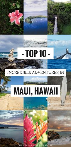 These are my top adventure activities to do in Maui Hawaii while on vacation there. Maui isn't cheap by any means so read up and save for a couple! Hawaii Travel Guide, Maui Travel, Travel Usa, Travel Tips, Travel Ideas, Travel Inspiration, Travel Photos, Croatia Travel, Italy Travel