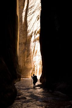 the Narrows, in Zion National Park, Utah