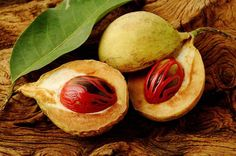 Organic Nutmeg essential oil 1oz by LaughingLilyHerbs on Etsy
