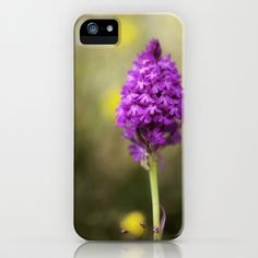Pyramidal Orchid iPhone Case by David P Hunter - $35.00