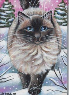 Ragdoll Cat - Winter Painting