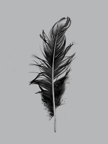 I would like this tatted on mi in white ink in future:) always  picked up feathers and put them in mi hair growin  up