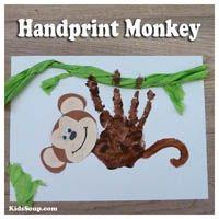 The rainforest preschool activities and crafts