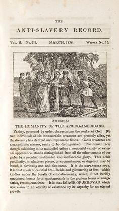 American slavery american freedom essay