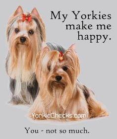 YorkieChecks.com ~ yorkie stationery, gifts, and home decor.