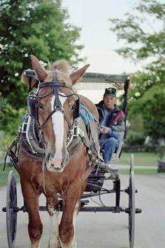 Mackinac Island, Michigan.  Horse Culture, and No Cars Allowed.