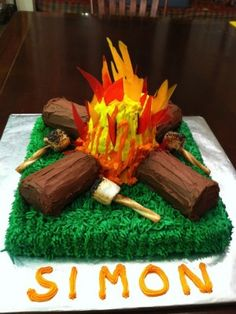 Campfire Cake & lots of other Camping-themed cakes!