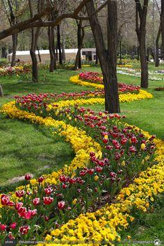 Mellat Park, Mashhad