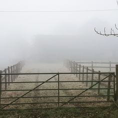 Another foggy start to the day at FFF HQ # countrysidelife Railroad Tracks, Weather, Day, Weather Crafts