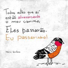 """""""Todos estes que aí estão atravancando o meu caminho, eles passarão. Eu passarinho!"""" Mário Quintana"""