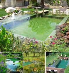 piscinas ecológicas. <3