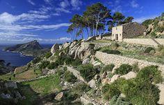 Trapa, Sierra de Tramontana, Mallorca, España