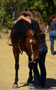 A candid moment caught between a horse and rider. Photo by Sarah Williams - www.sarahwilliamsphotoimpressions.com