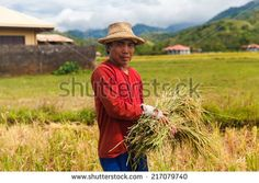 Philippines Stock Photos, Images, & Pictures | Shutterstock