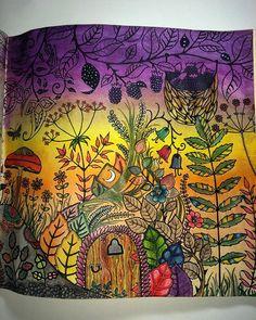 #florestaencantada #euamocolorir #ilovepainting #florestaencantadacolors #enchantedforest #florestaencantada #johannabasford